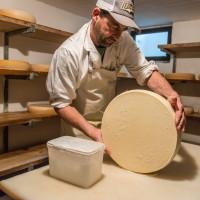 Käse machen