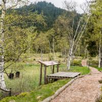 Highmoor Mittersill