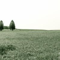 Wandern Freudenstadt