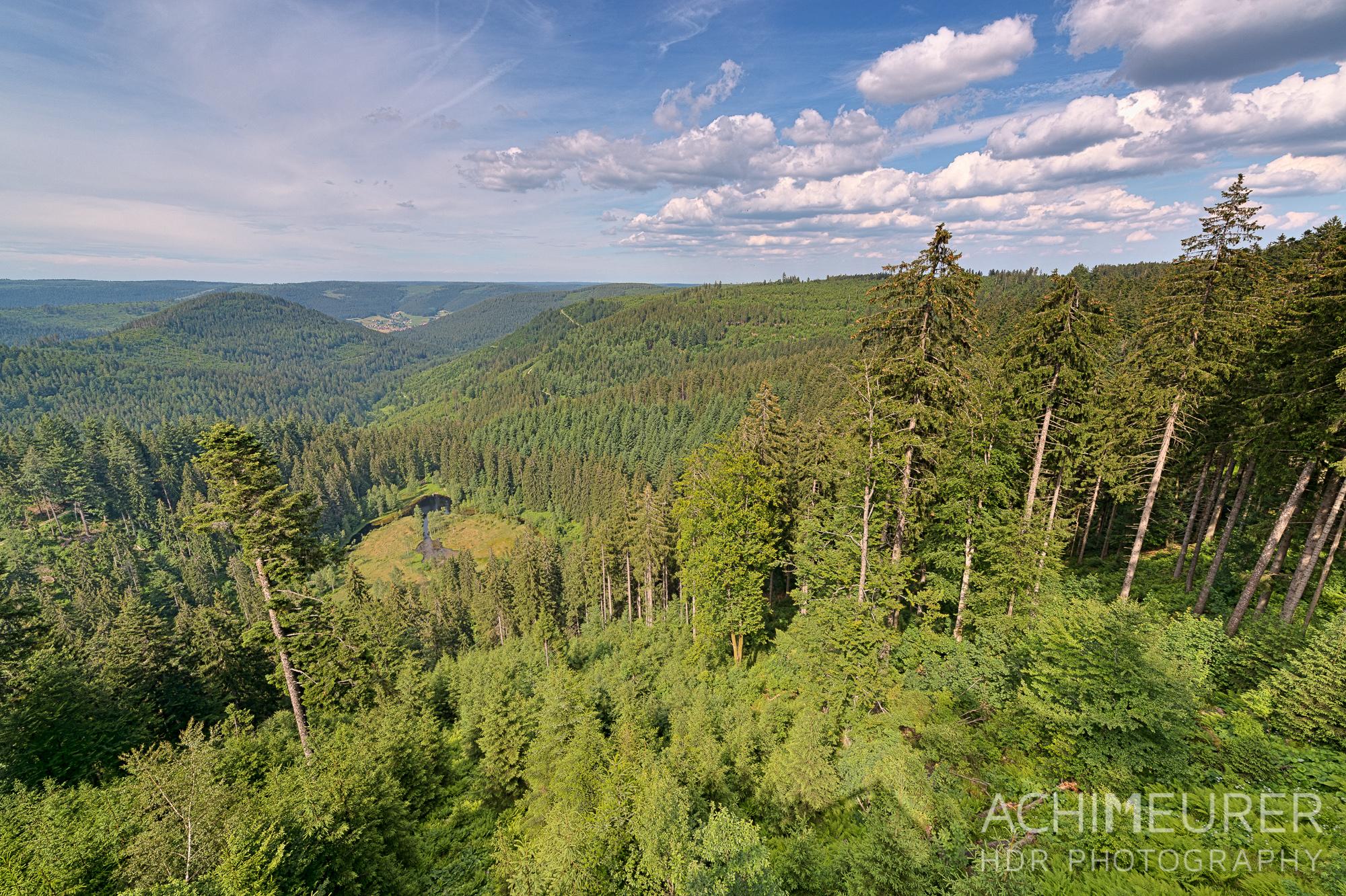 Aussicht auf den Schwarzwald