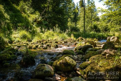 Woche 10: Rippenschaden und Ruhe