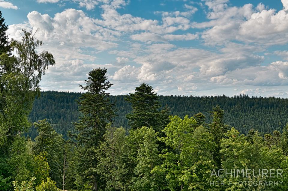 Ausblick vom Sommerberg auf Bad Wildbad