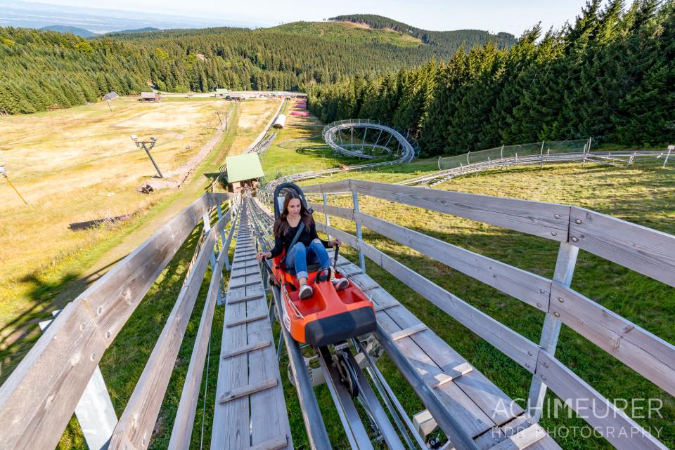 Mehliskopf-Bob-DownhillCart-Wald-Klettergarten_9362