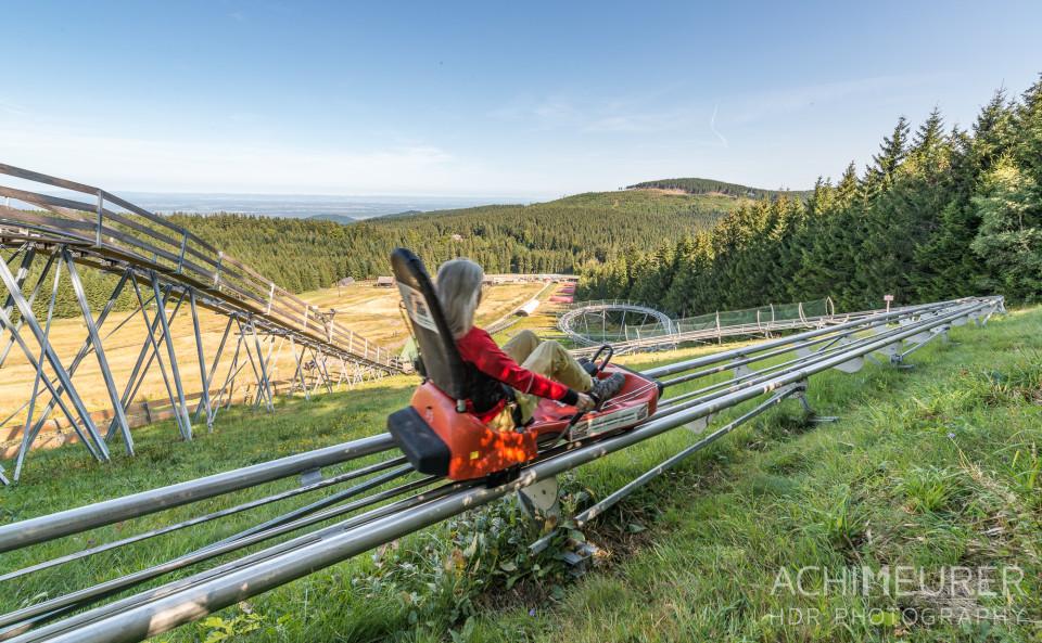 Mehliskopf-Bob-DownhillCart-Wald-Klettergarten_9372