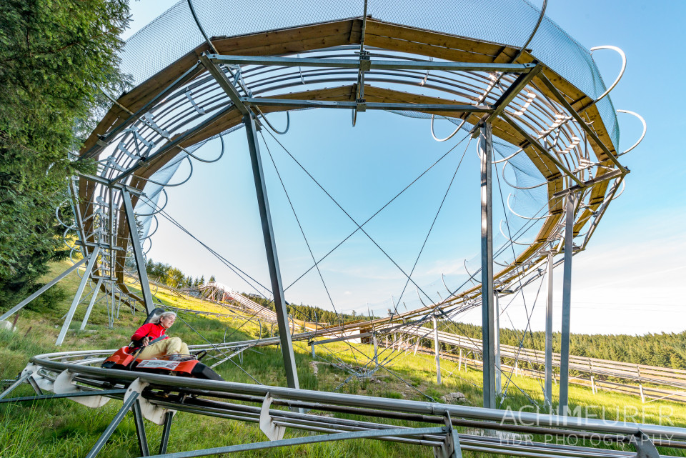Mehliskopf-Bob-DownhillCart-Wald-Klettergarten_9391