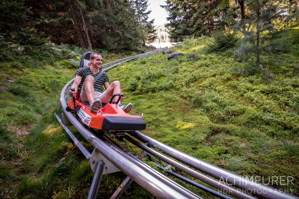 Mehliskopf-Bob-DownhillCart-Wald-Klettergarten_9412