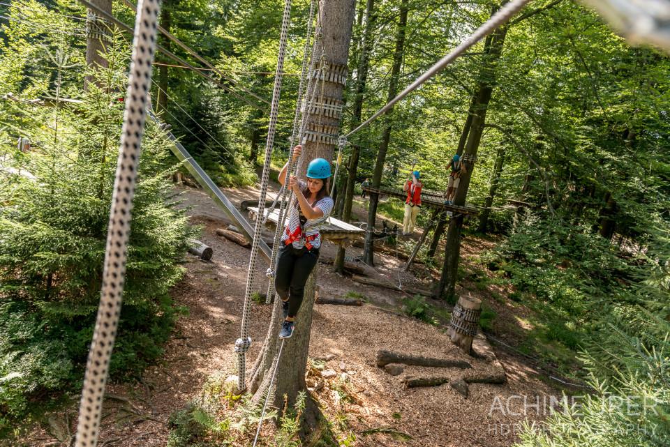 Mehliskopf-Bob-DownhillCart-Wald-Klettergarten_9516