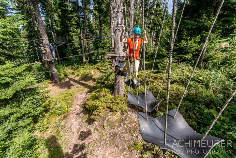 Mehliskopf-Bob-DownhillCart-Wald-Klettergarten_9584