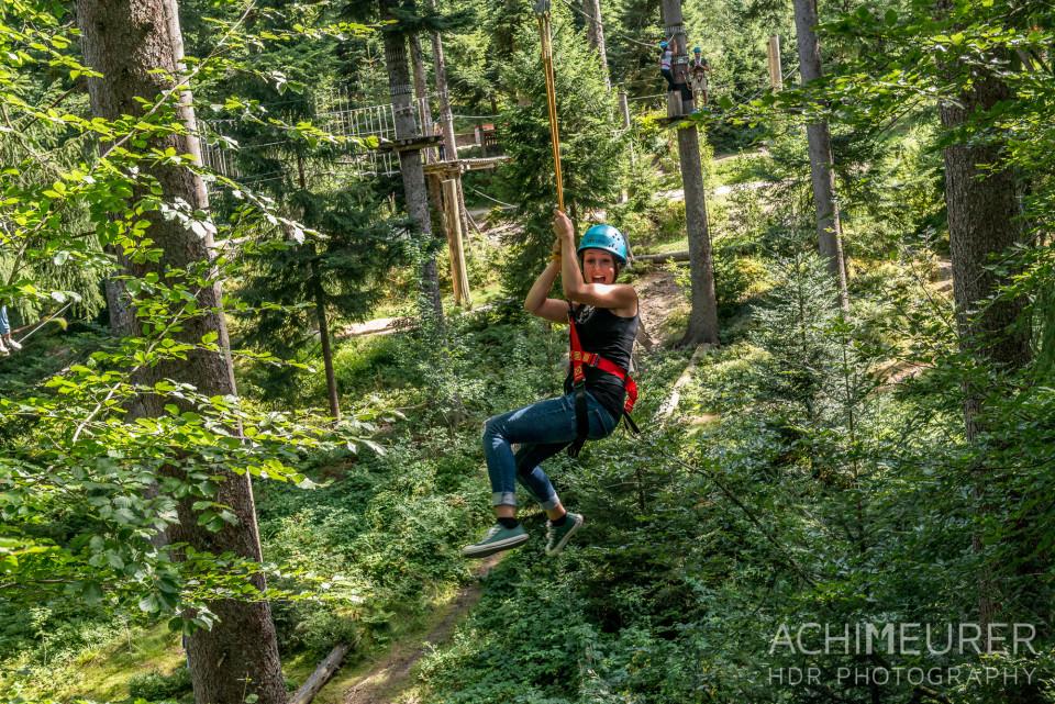 Mehliskopf-Bob-DownhillCart-Wald-Klettergarten_9593