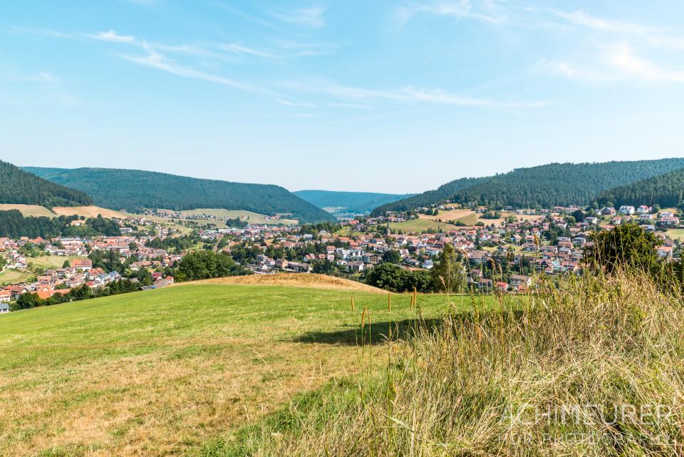 Segway Tour Baiersbronn