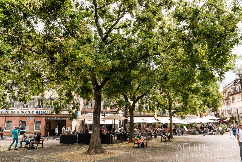 Strasbourg-Frankreich_8199