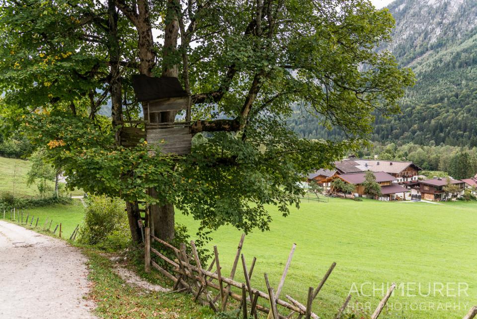 Saalachtal-Unken-Zaunweg_1404