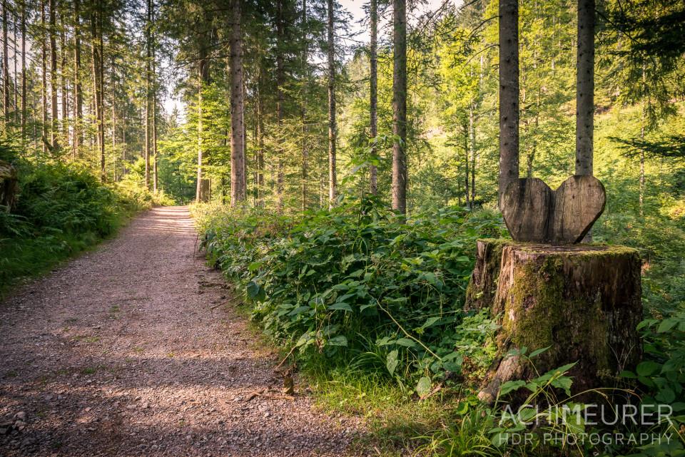 Wanderweg mit Herz im Tonbachtal
