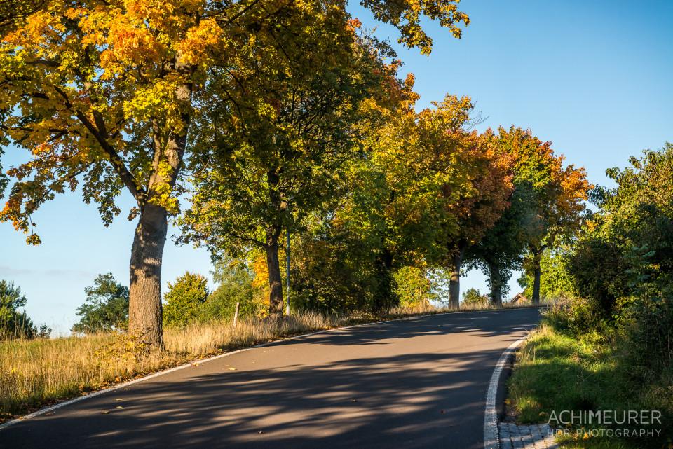 Herbstlandschaft im Thüringer Wald
