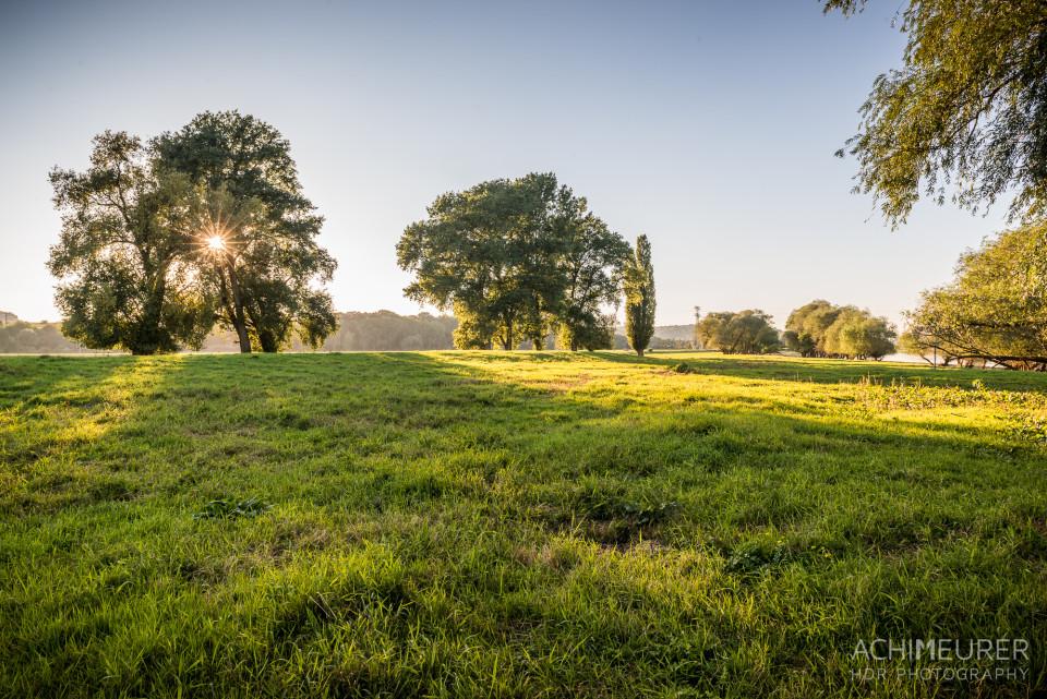 Abendstimmung zum Sonnenuntergang an der Elbe