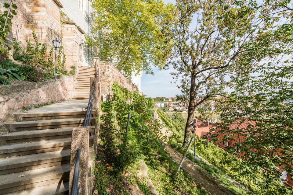 Der Abgang in die Altstadt mit Blick auf den Weinberg