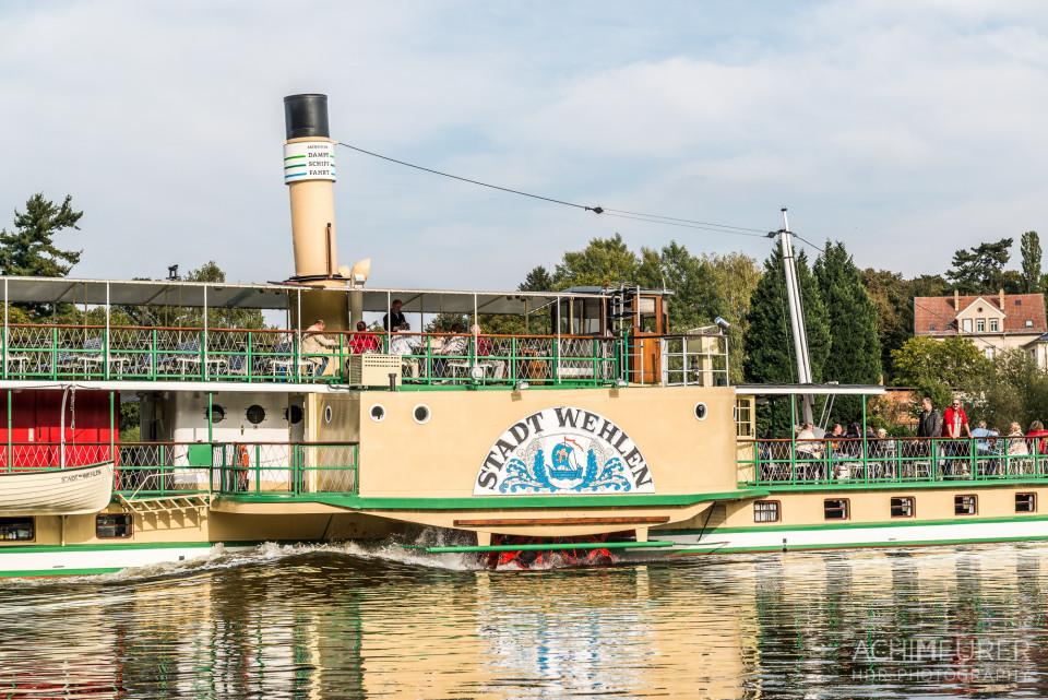 Der historische Schaufelraddampfer auf der Elbe
