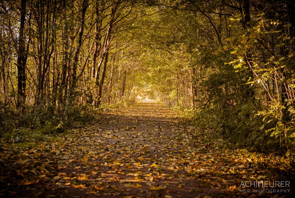 Herbststimmung in Großschönau