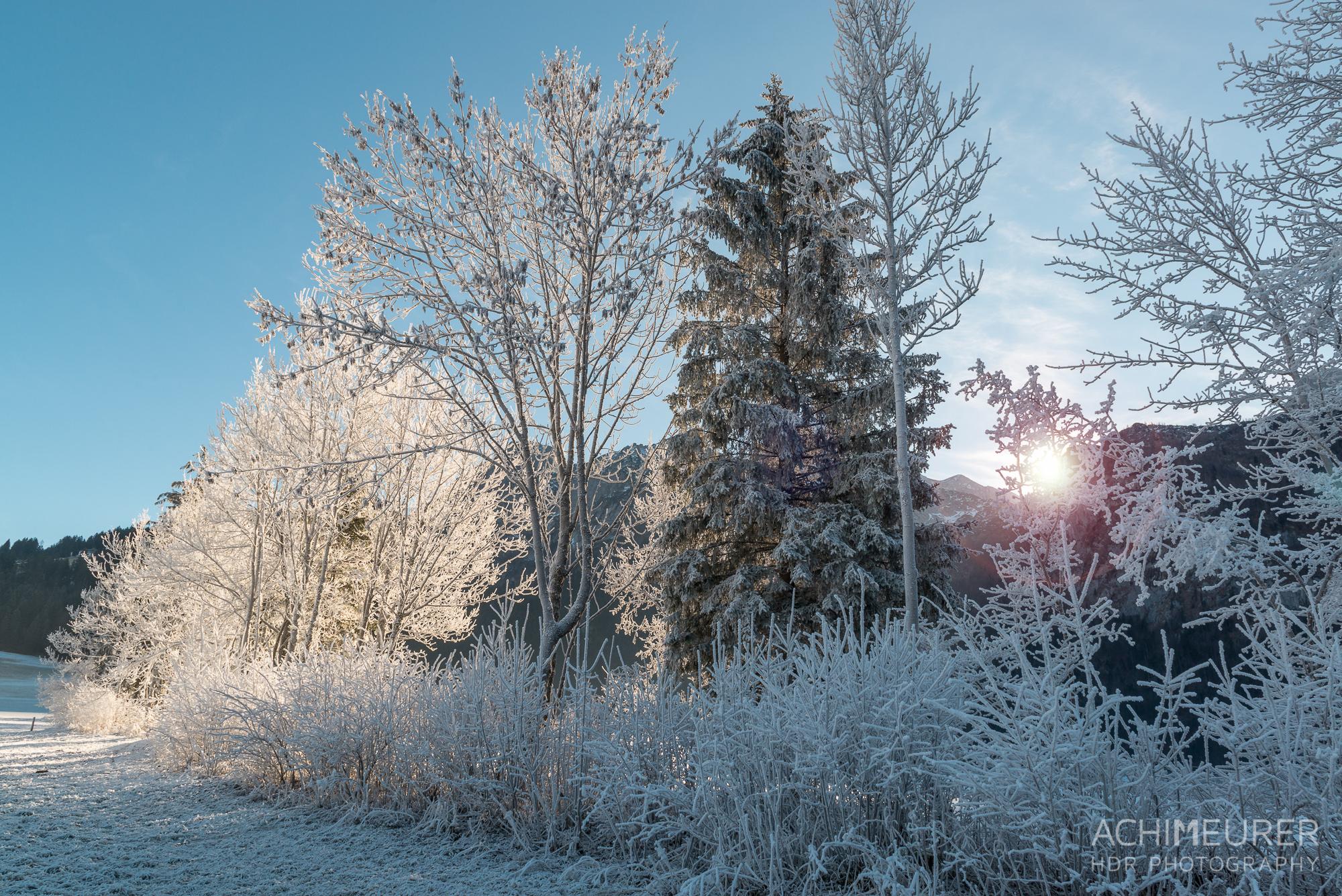 Winter-Wonder-Land Au in Abtenau