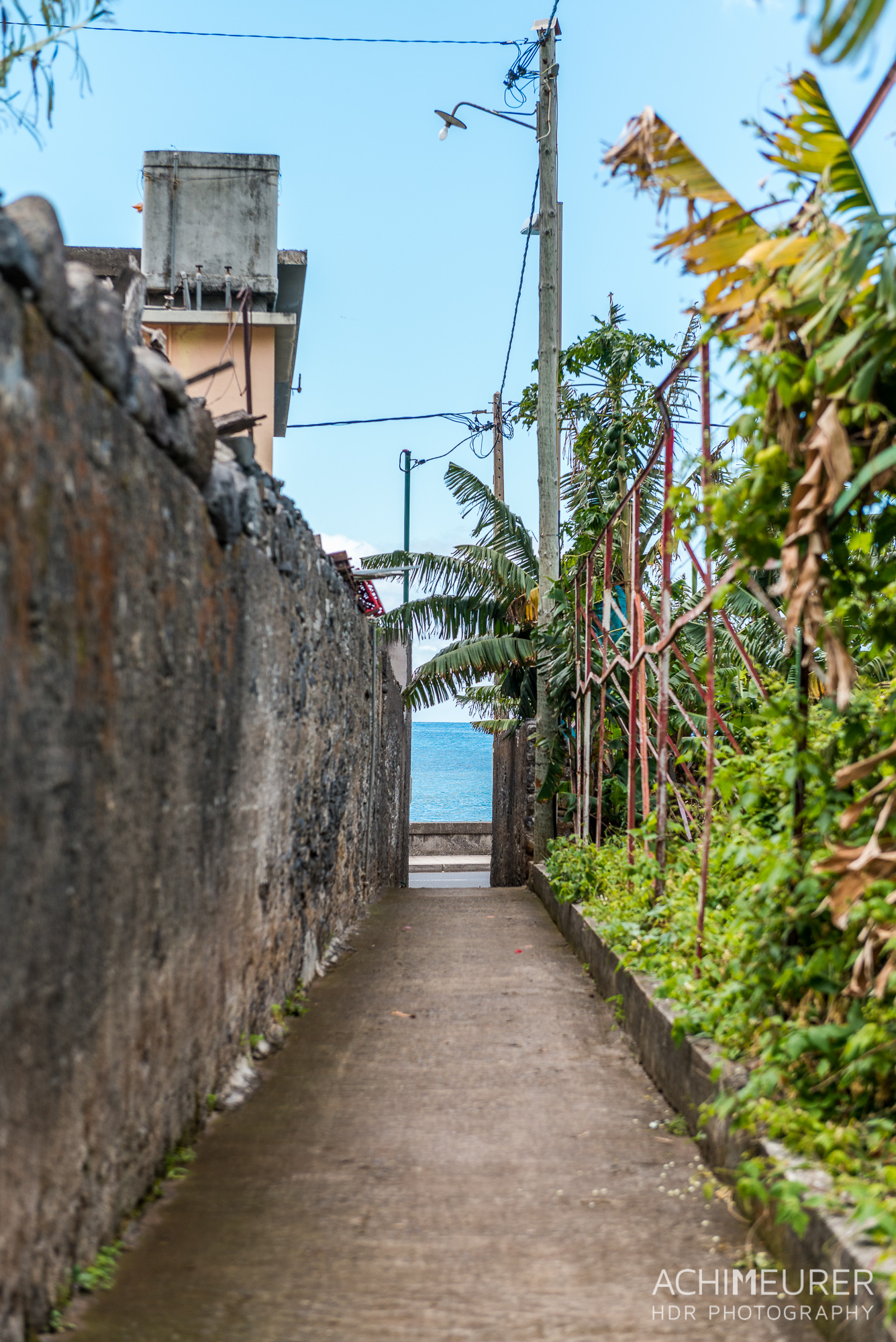 Madeira_6884
