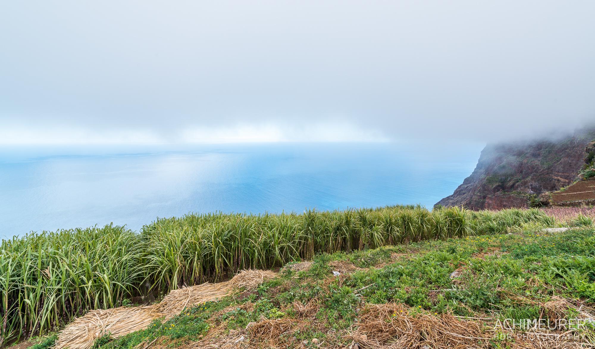 Madeira_6955