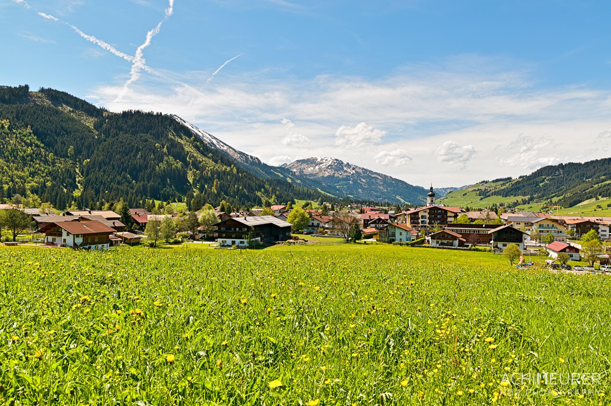 Tannheimer-Tal-Fruehling-Landschaft-Wiese-Blumen_1959_8_7_HDR
