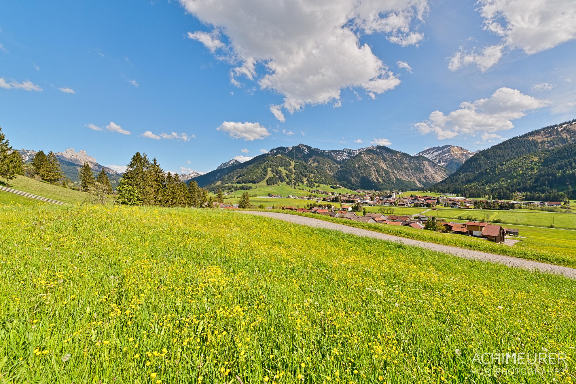 Tannheimer-Tal-Fruehling-Landschaft-Wiese-Blumen_2049_8_7_6_5_HDR