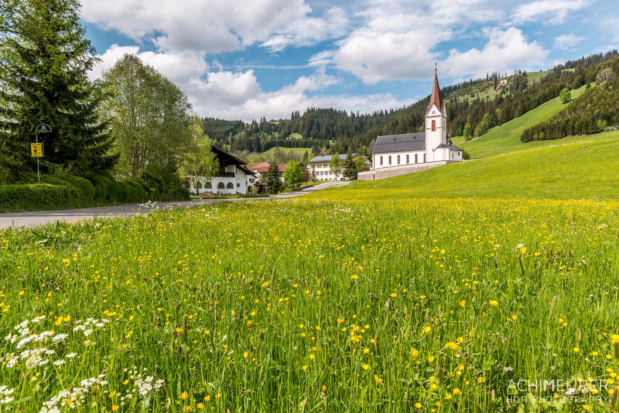 Tannheimer-Tal-Fruehling-Landschaft-Wiese-Blumen_2158