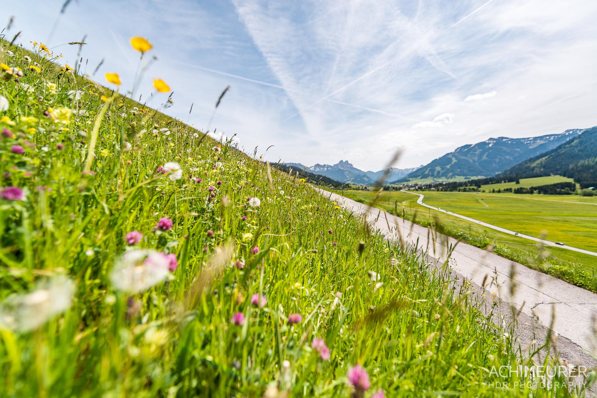 Tannheimer-Tal-Fruehling-Landschaft_2361