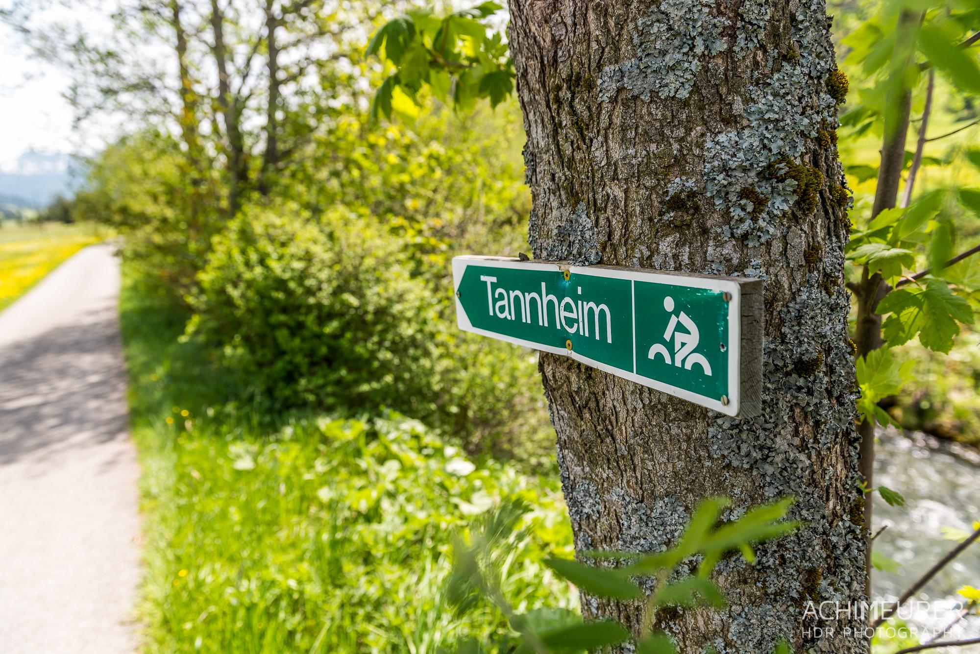 Tannheimer-Tal-Fruehling-Landschaft_2375