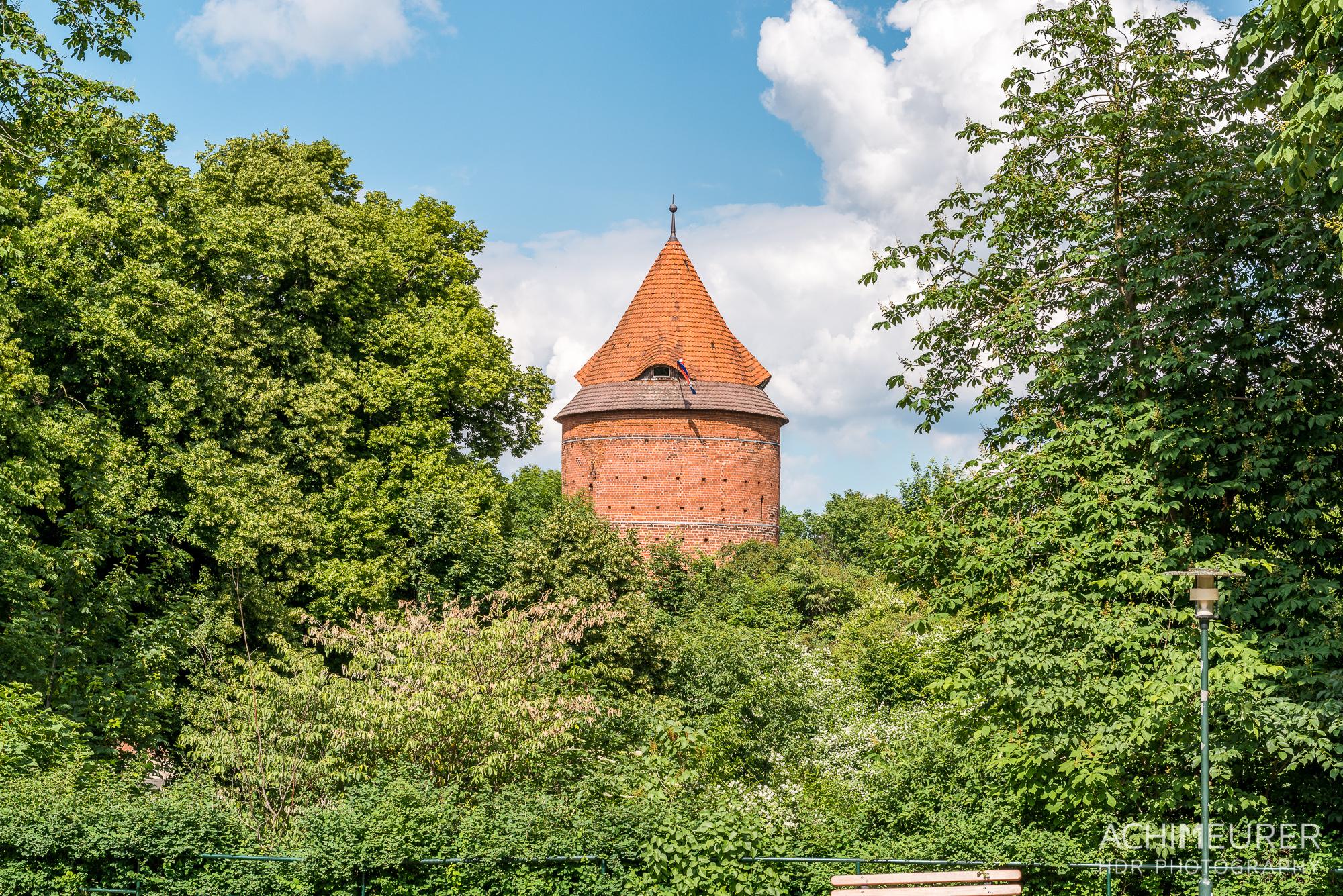 Hausboot-Kuhnle-Mueritz-Mecklenburg-Vorpommern-See_3760