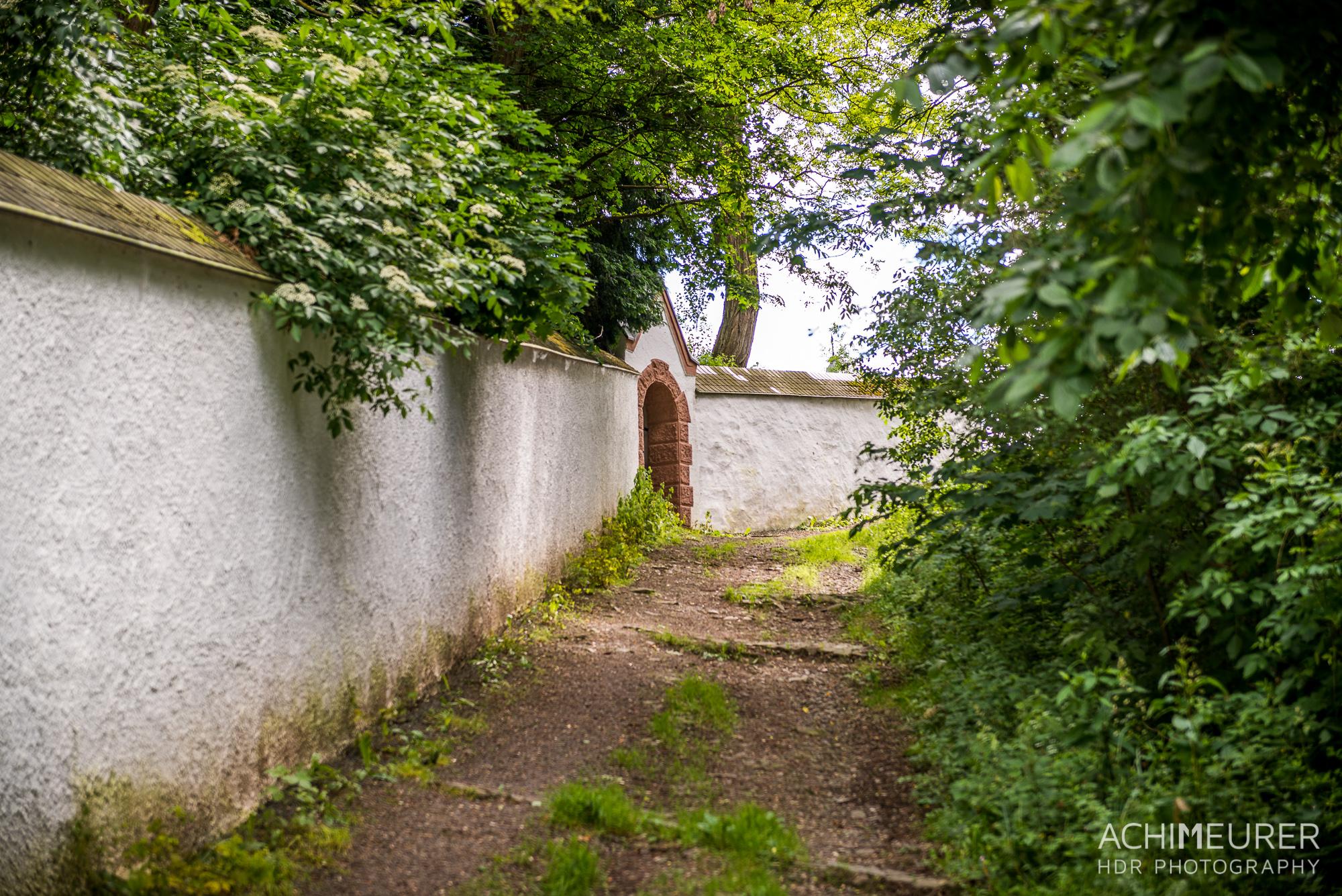 Eifel-Rheinland-Pfalz-Rureifel_5409