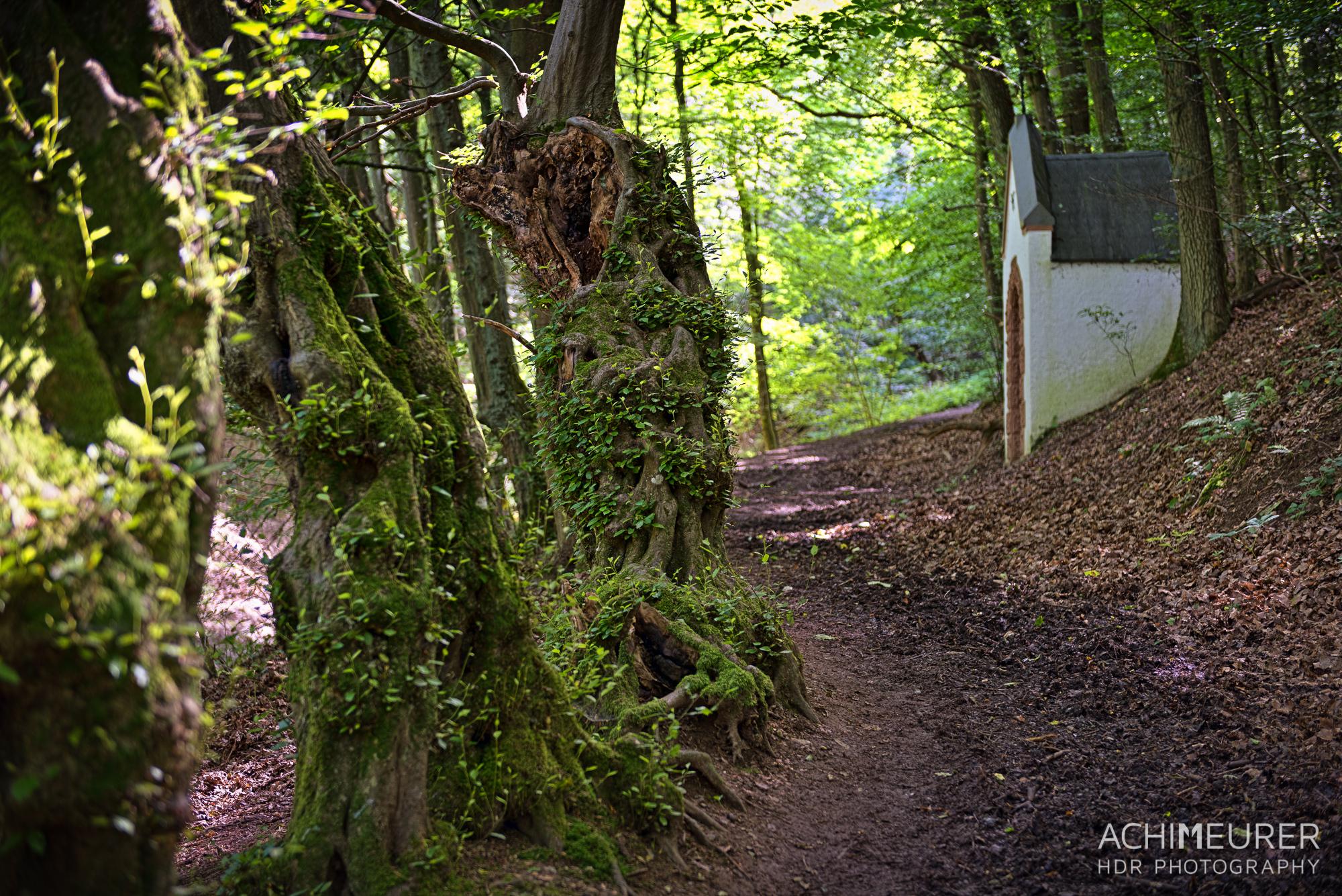 Eifel-Rheinland-Pfalz-Rureifel_5433_32_31_30_29_28_27_HDR