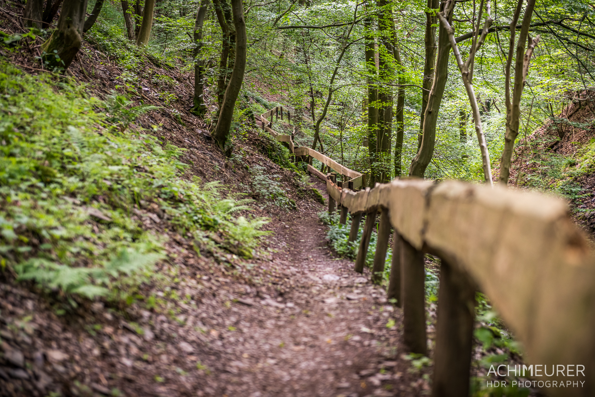 Eifel-Rheinland-Pfalz-Rureifel_5451