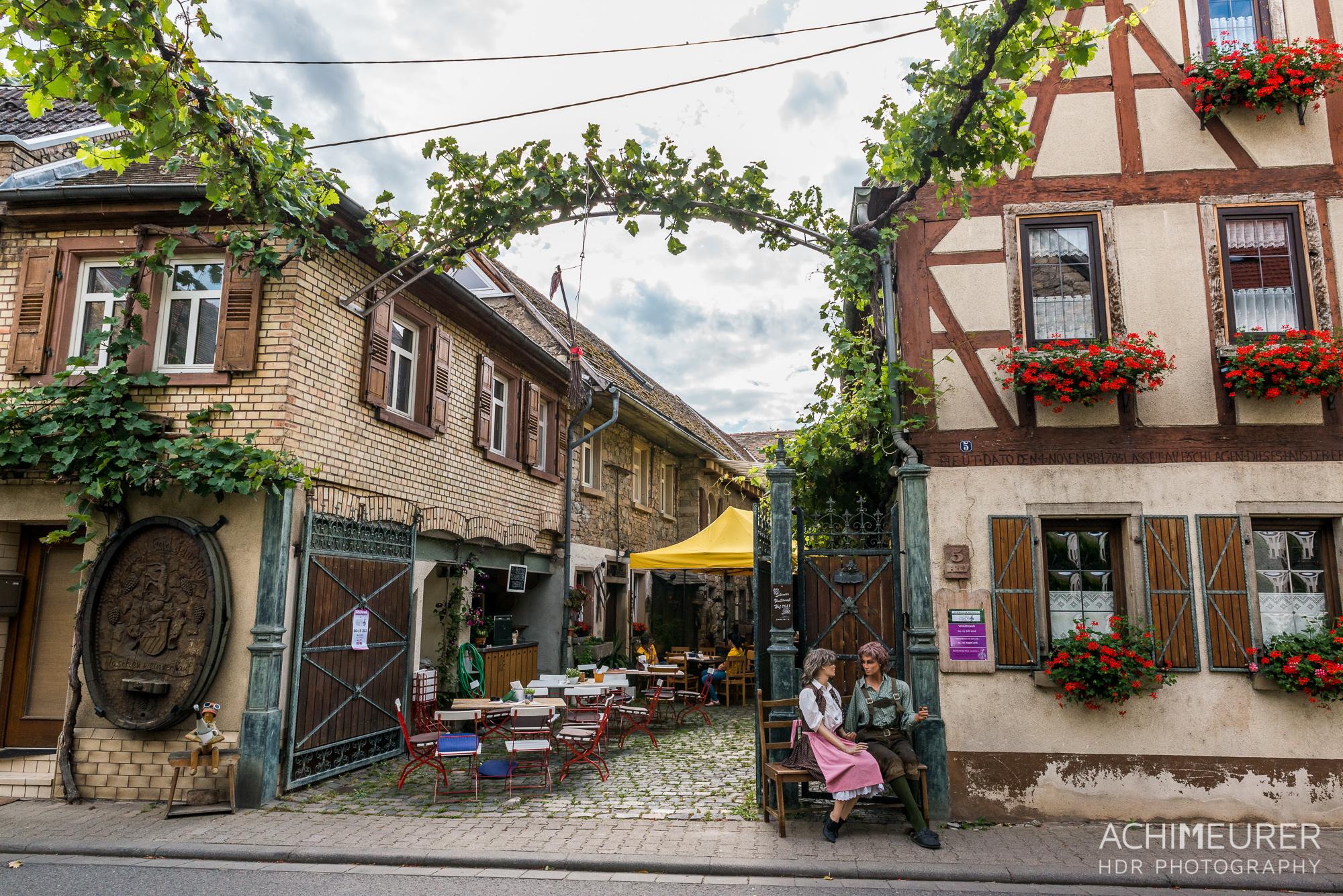 Rheinhessen-Rheinland-Pfalz_6152