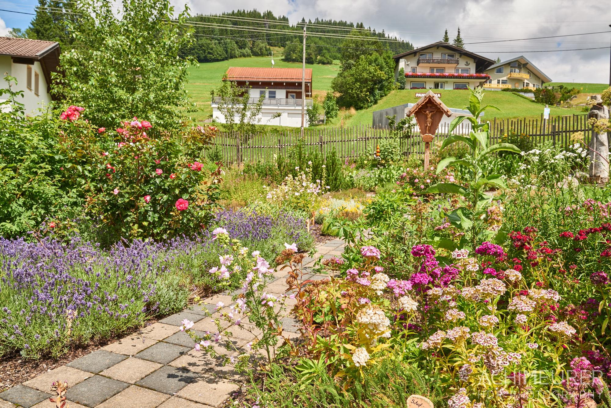 Tannheimertal-Sommer-Jungholz-Kraeuter_8365