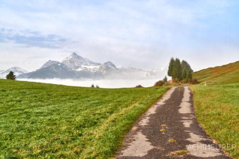 Tannheimertal-Herbst-Morgen-Stimmung-Nebel_4809 by AchimMeurer.com .