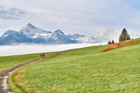 Tannheimertal-Herbst-Morgen-Stimmung-Nebel_4811 by AchimMeurer.com .