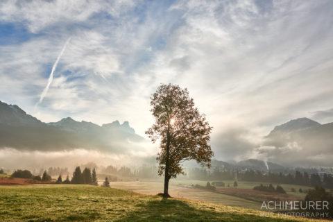 Tannheimertal-Herbst-Morgen-Stimmung-Nebel_4815 by AchimMeurer.com .