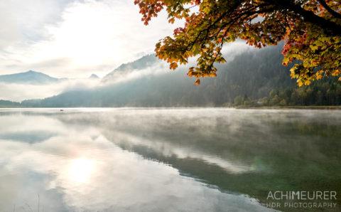 Tannheimertal-Herbst-Morgen-Stimmung-Nebel_4853 by AchimMeurer.com .