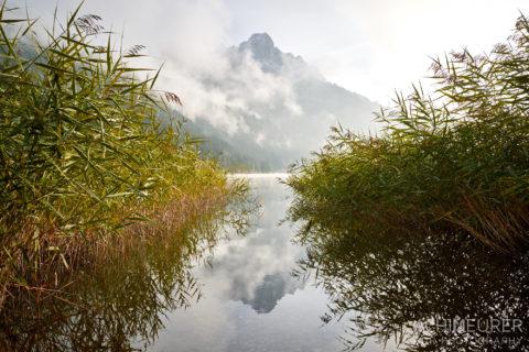 Tannheimertal-Herbst-Morgen-Stimmung-Nebel_4877 by AchimMeurer.com .