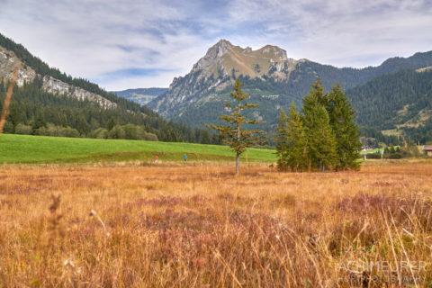 Tannheimertal-Herbst-Vater-Unser-Weg_4507 by AchimMeurer.com .