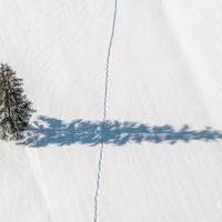 Der Blick von oben - während einer Ballonfahrt im Tannheimertal in Tirol, Österreich by Array.