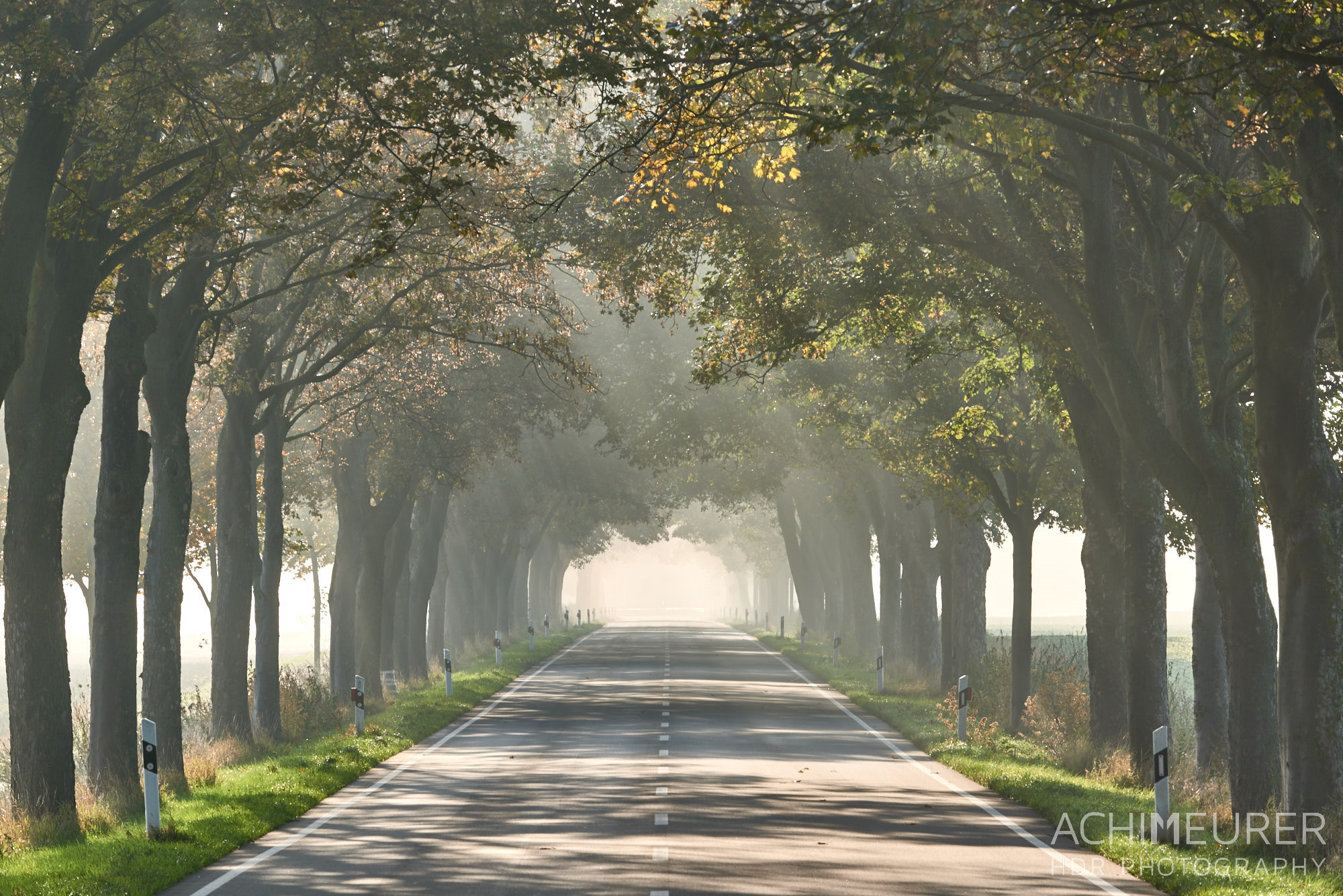 Landschaft im Morgennebel - Nördliches Harzvorland - #nHavo by Array.