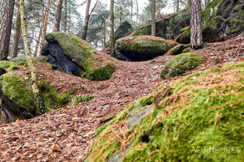 Fotos vom Photowalk Februar 2017 Sächsische Schweiz by Achim Meurer.