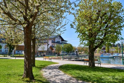 Frühling in Mattsee im Salzburgerland, Österreich by AchimMeurer.com .