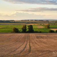 Sonnenuntergang - Nördliches Harzvorland by AchimMeurer.com                     .