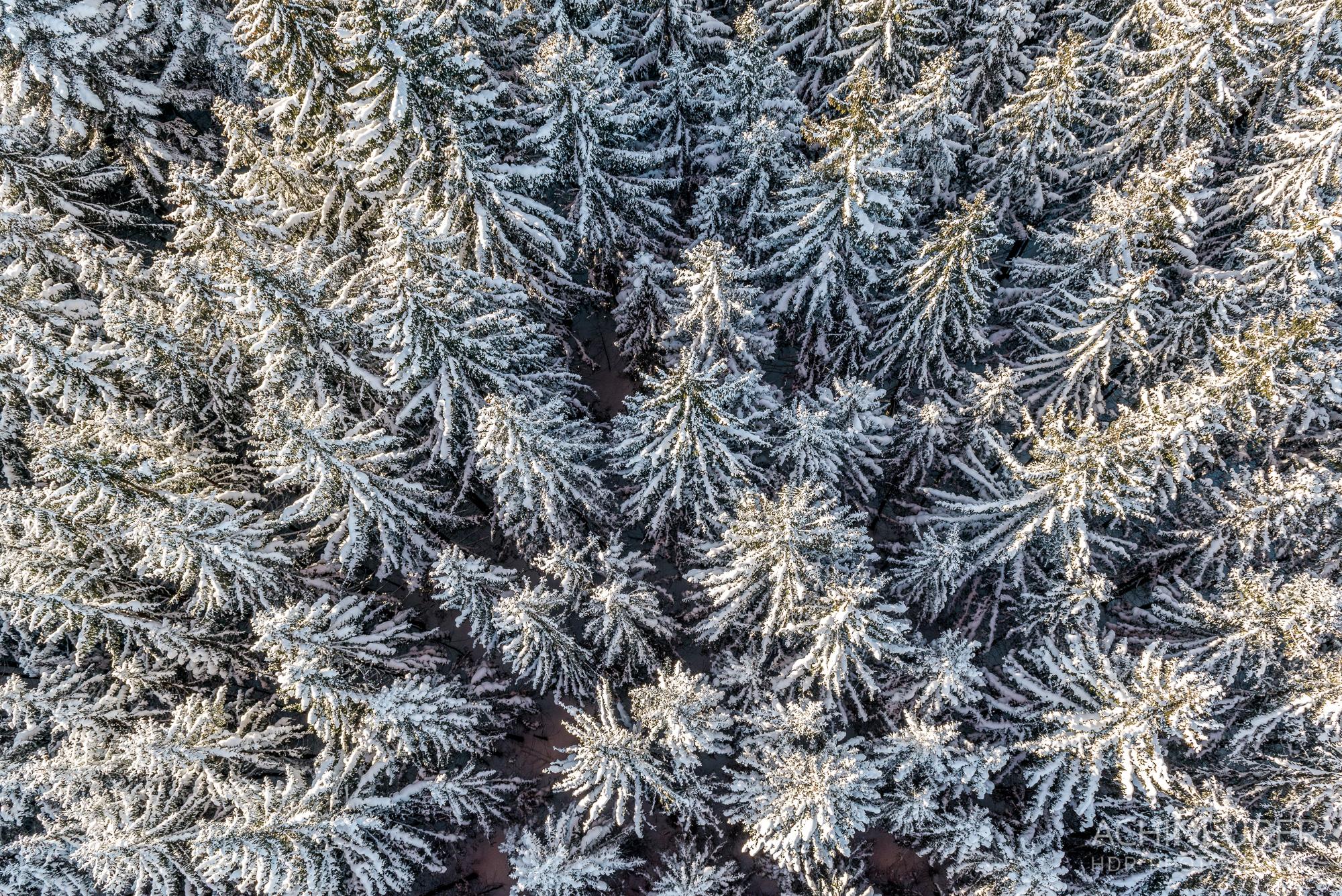 Die-schoensten-Winterfotos-Winterlandschaft-2 by Achim Meurer.