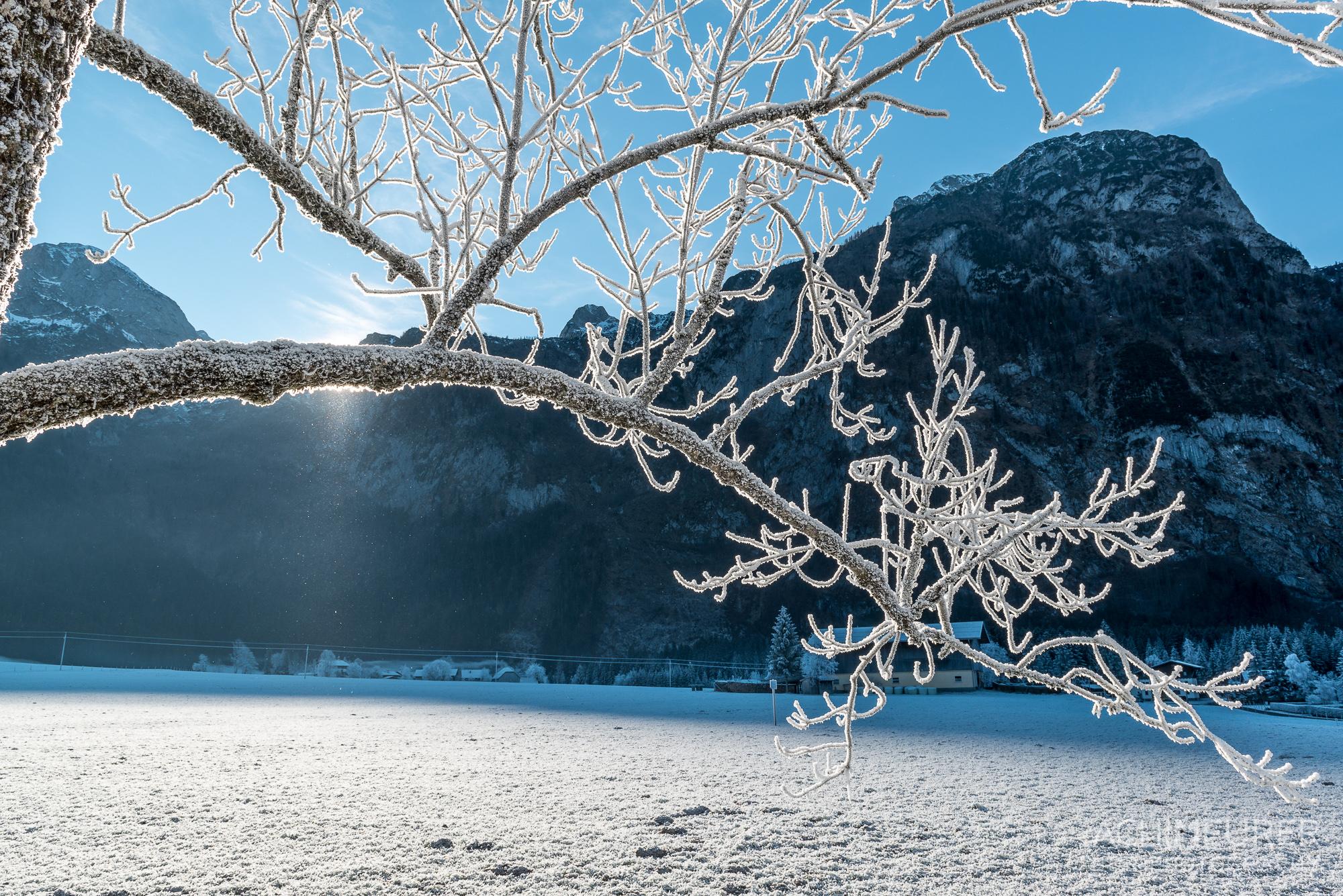 Die-schoensten-Winterfotos-Winterlandschaft-38 by Achim Meurer.