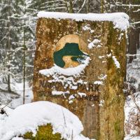 Winterlandschaft in der Sächsischen Schweiz by AchimMeurer.com.
